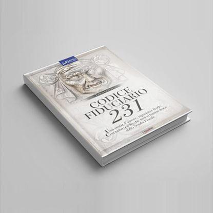 Codice Fiduciario 231 - I Libri di Class Editori