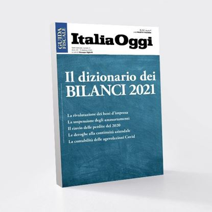 Immagine di Il dizionario dei BILANCI 2021