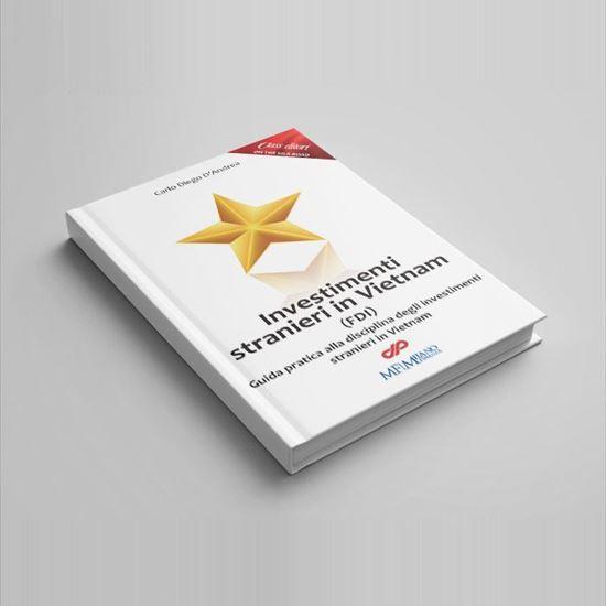Immagine di INVESTIMENTI STRANIERI IN VIETNAM - digital